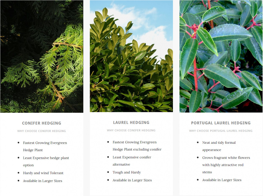 overview of multiple types of evergreen hedging